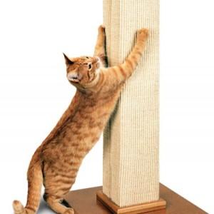 Rascadores-para-gatos-kattos-veterinaria-especializada-para-gatos-bogota-tienda-de-mascotas-catshop