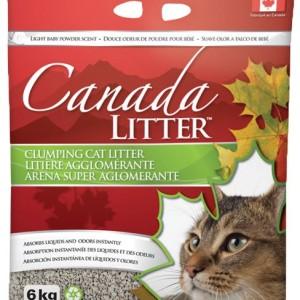 arena-para-gatos-canada_cat_litte-kattos-veterinaria-especializada-para-gatos-bogota-tienda-de-mascotas-catshop