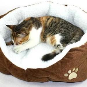 cama-para-gatoss-kattos-veterinaria-especializada-para-gatos-bogota-tienda-de-mascotas-catshop