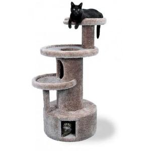 gimnasio-gato-kattos-veterinaria-especializada-para-gatos-bogota-tienda-de-mascotas-catshop